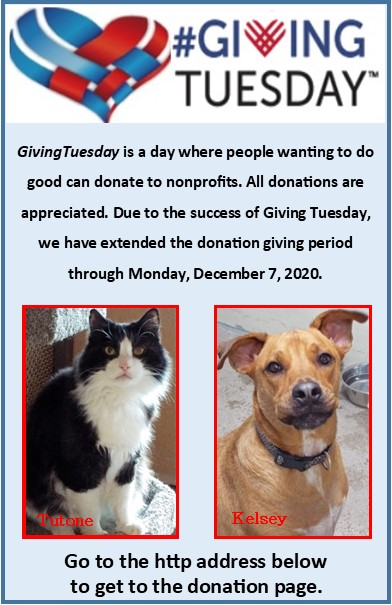 Giving Tuesday The Animal League Of Green Valley